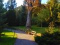 bila_lhota_arboretum_10