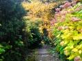 bila_lhota_arboretum_8