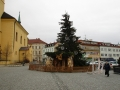 Stromek a betlém na náměstí TGM