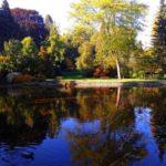 Bílá Lhota – Arboretum s více než 300 druhy stromů